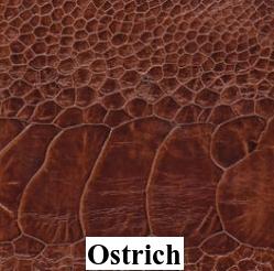 Smooth Ostrich
